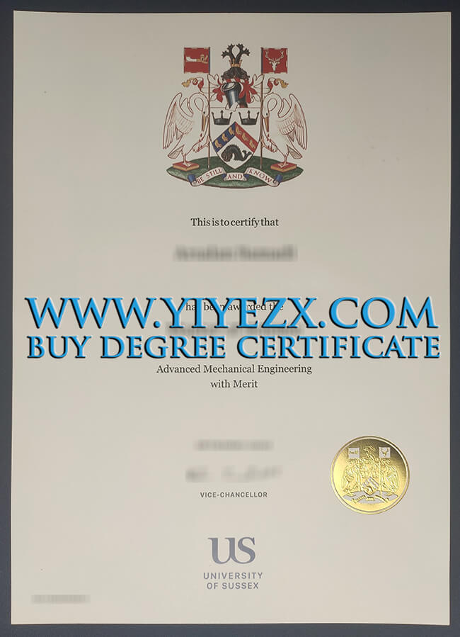 University of Sussex certificate 萨塞克斯大学证书