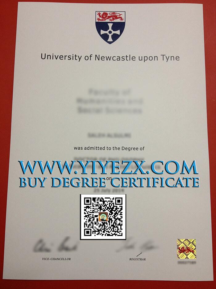 Newcastle University degree