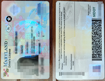 Buy a Fake Maryland Driver's License with scannable details,  马里兰州驾照出售