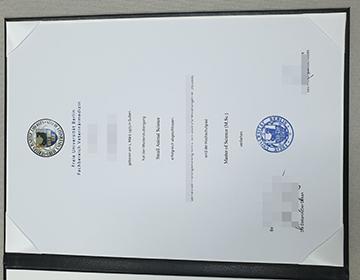 Can I Purchase a Fake Freie Universität Berlin Diploma? 购买柏林自由大学文凭